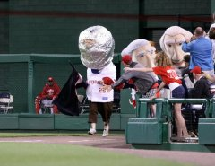 Teddy as Astronaut, By Cheryl Nichols, Nats News Network