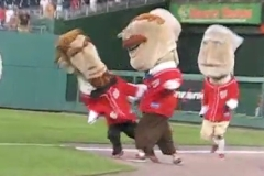 Teddy Roosevelt punches Abe Lincoln in the Nationals Park presidents race