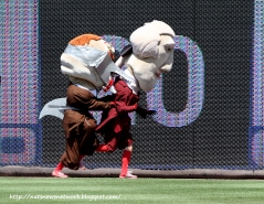 Washington Nationals racing president Teddy Roosevelt celebrates Shark Week - Photo by Cheryl Nichols