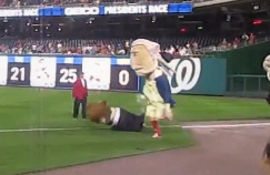 Washington Nationals racing president George Washington watches as Abe Lincoln falls