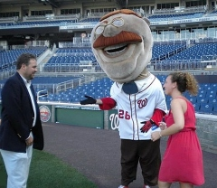 Nationals Park Marriage Proposal - Teddy Roosevelt hands over the bride-to-be