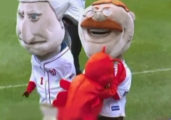 Washington Nationals racing president Teddy Roosevelt attacked by Luc the Lobster