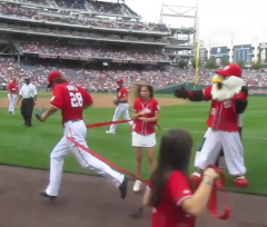 Jayson Werth interferes with the presidents race - Washington Nationals