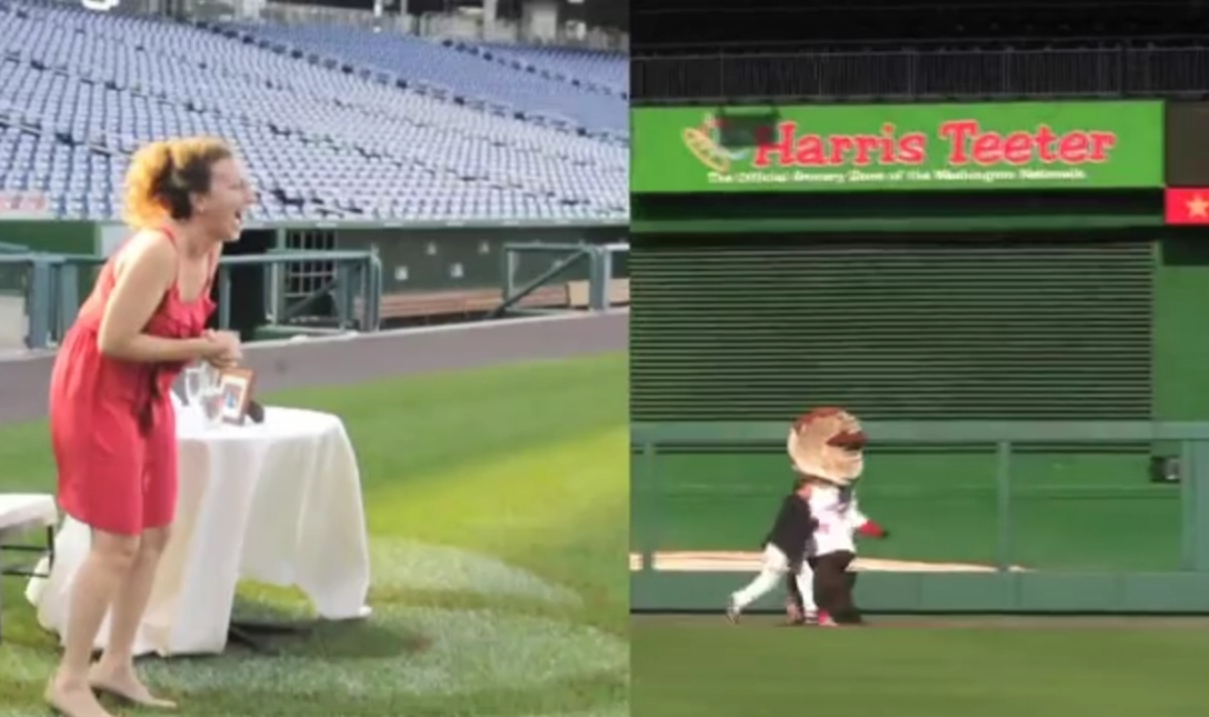 Nationals Park Marriage Proposal - Racing Teddy Roosevelt for her affections