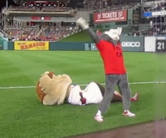 That Cat tackles Teddy Roosevelt in the Washington Nationals Presidents Race