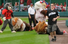 That Cat takes down Teddy Roosevelt in the Washington Nationals Presidents race