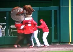 Washington Nationals Bullpen Presidents Race Interference