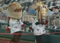 Abe Lincoln wears a Mark Grace mask to win the presidents race at Nationals Park
