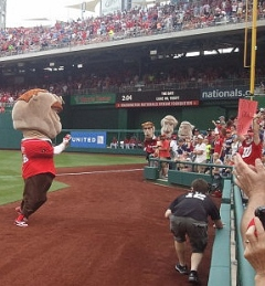 Teddy Roosevelt stops in the Washington Nationals Presidents Race