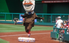 Nationals racing presidents Olympics steeplechase Teddy