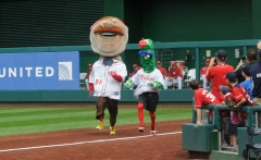 Teddy Wins the presidents race vs the fake Philly Phanatic