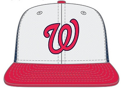 The Washington Nationals New Hats BP Caps