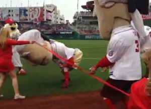 George Washington Thomas Jefferson collude Washington Nationals Presidents Race