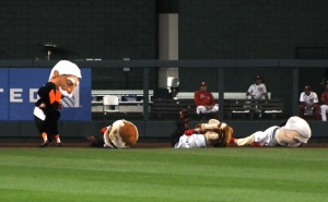 Baltimore Orioles Bird Tackles Nationals Racing Presidents