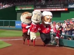 Racing Presidents Teddy Attacks George