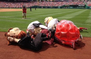 Cicada tackles Nationals racing presidents