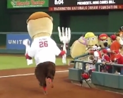 Washington Nationals Teddy Roosevelt attacks Pittsburgh Racing Pierogies