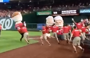 Grounds Crew Attacks Teddy