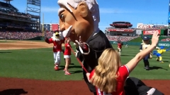 Nationals Park racing presidents photo finish William Howard Taft