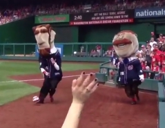 Washington Nationals Presidents Race World Cup USA