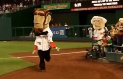 Abe Lincoln cheats presidents race Nationals Park