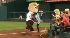 Nationals Racing President Teddy Roosevelt Sharknado