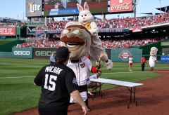 Easter Bunny Tackles Teddy Roosevelt