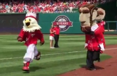Screech wins Nationals Presidents Race