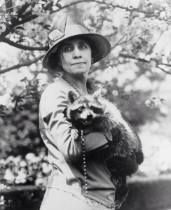 Rebecca Raccoon Grace Coolidge Calvin president