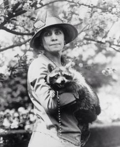 Rebecca Raccoon Grace Coolidge Calvin president