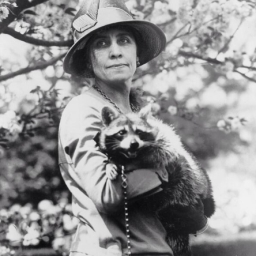 Video: Calvin Coolidge's pet raccoon disrupts presidents race