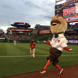 Teddy Roosevelt pulls the rug out from racing presidents on opening day