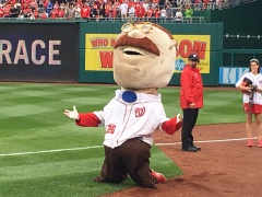 Teddy Roosevelt loses presidents race