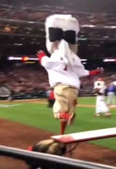 George Washington Nationals Racing President Playoffs NLDS Game 5 obstacle course